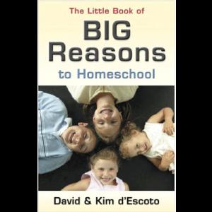 Big-Reasons-to-Homeschool